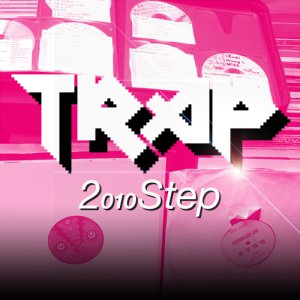 2010Step cover